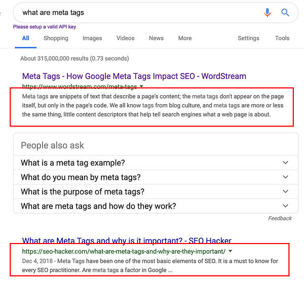 "SERPs and meta descriptions for Google query ""what are meta tags"""
