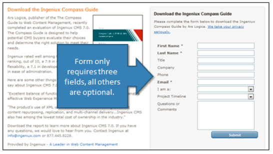 Form fields on a landing page.
