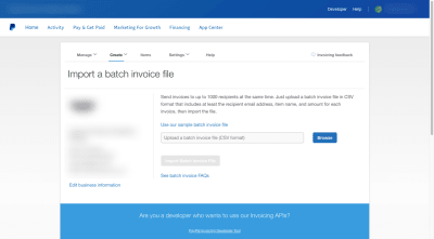 The PayPal bulk invoice importer provides a single paragraph with instructions on how to use the importer